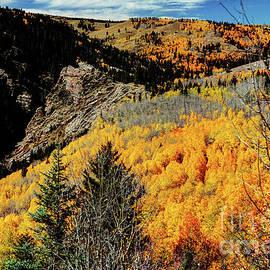 Michael Ciskowski - Fall in the Rockies