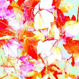 Wonju H - Fall leaves
