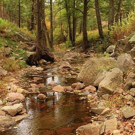 Roena King - Fall Stream and Rocks