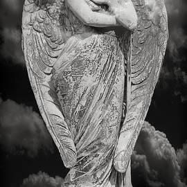 Steven  Michael - Fallen Angel