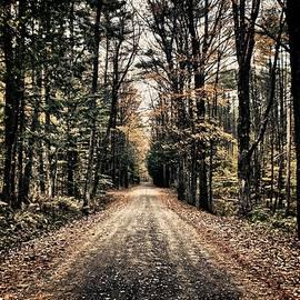 Nathan Larson - Fallen Road