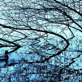 Jane Gatward - Fallen Tree With Mallard