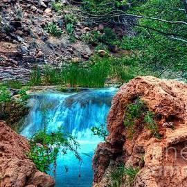 Thomas  Todd - Falls seen through Natures Window