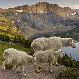 Howie Garber - Family of 3 in Glacier With a View