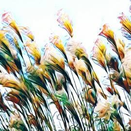 Jenn Teel - Fancy Grass