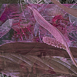 Lynda Lehmann - Fantasy African Violets and Peace Lily Pink, Red and Pink