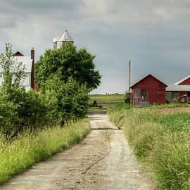 Ann Bridges - Farm