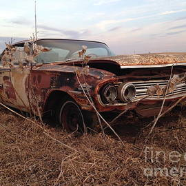 Chris Brewington  - Farmland Impala