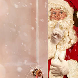 Father Christmas At The Door - Amanda And Christopher Elwell