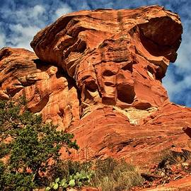 Flying Z Photography By Zayne Diamond - Fay Canyon Red Rock, Sedona, Arizona