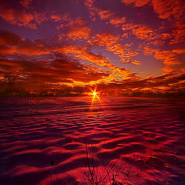 Phil Koch - Feeling Good Never Cost A Thing