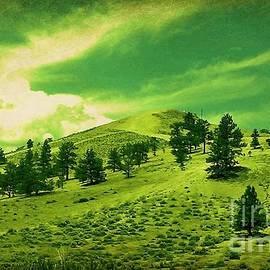 Bobbee Rickard - Feeling The Green