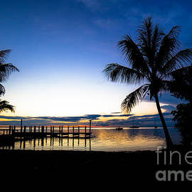 Rene Triay Photography - Feeling the Tropical Love