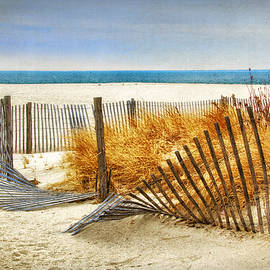 Carolyn Derstine - Fence along the Dunes