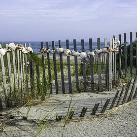 Amanda Sinco - Fence at Nantucket