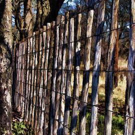 Douglas Barnard - Fenced