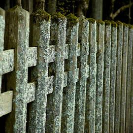 Sebastian Musial - Fenced In