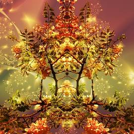 Nancy Pauling - Festive Fractal