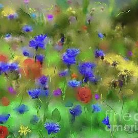 Karen Harding - Field of Flowers