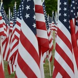Matt Plyler - Field of Honor - American Stars and Stripes
