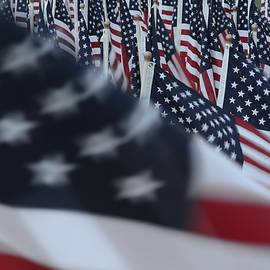 Matt Plyler - Field of Honor - Flags Detail