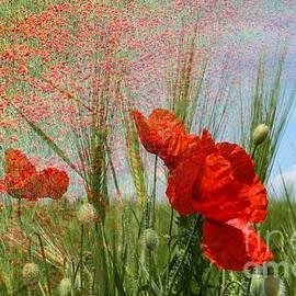 Ornella Bonomini - Field Of Poppies