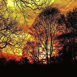 Carol F Austin - Fiery Red Sunset