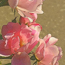 Miriam Danar - Fifty Shades of Pink - Roses on a Summer Day
