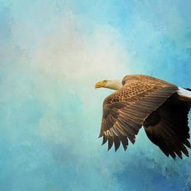 Jai Johnson - Finding The Sun Bald Eagle Art