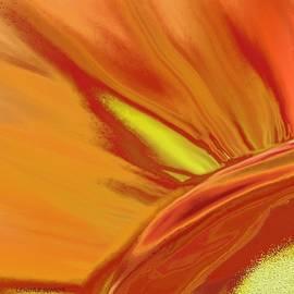 Lenore Senior - Fire Flower