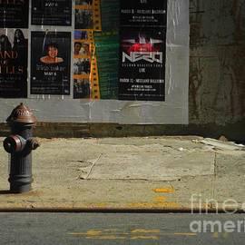 Miriam Danar - Fire Hyrant with Billboard