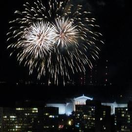Hammel - Fireworks over Art  Museum