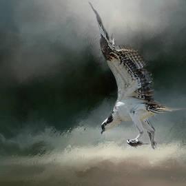 Jai Johnson - First Catch Of The Morning Osprey Art by Jai Johnson