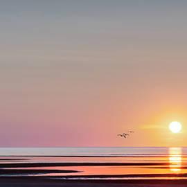 Bill Wakeley - First Encounter Beach Cape Cod