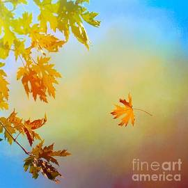 Janette Boyd - First Glimpse of Autumn in Oklahoma