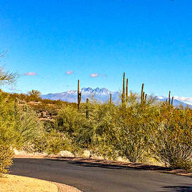 Barbara Zahno - First Snow on the Four Peaks