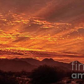 Robert Bales - First Sunrise