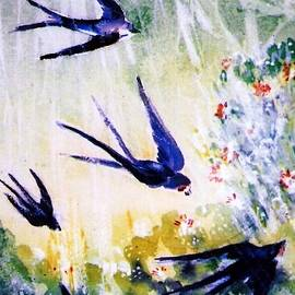 Trudi Doyle - First Swallows of Summer