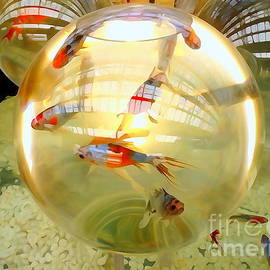 Ed Weidman - Fishbowls