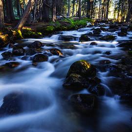 Vishwanath Bhat - Fishhook Creek in Stanley Idaho USA
