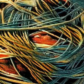 Colette V Hera Guggenheim - Fishing  Rope