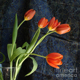 Georgia Sheron - Five Orange Tulips