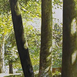 Owen McKenzie - Five Trees