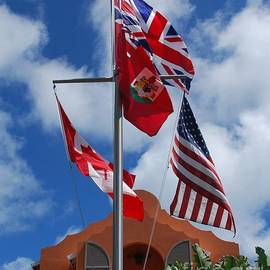 A Collection Of Flags At Grotto Bay, Bermuda