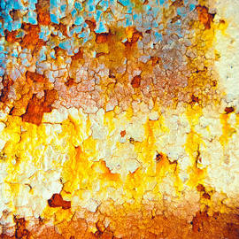 Silvia Ganora - Flaking rusty iron