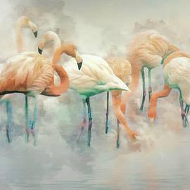 Brian Tarr - Flamingo Fantasy