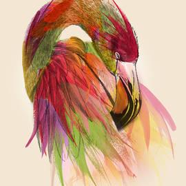 flamingo  - Mark Ashkenazi