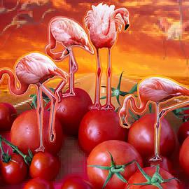 Nikolay Devnenski - Flamingo Sunset
