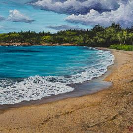 Darice Machel McGuire - Fleming Beach Maui