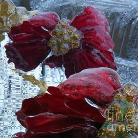 Dominique Fortier - Fleur de glace // Poinsettia // Ice Flower